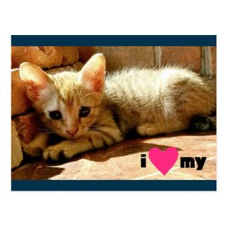 Corazón I mi gato Postal