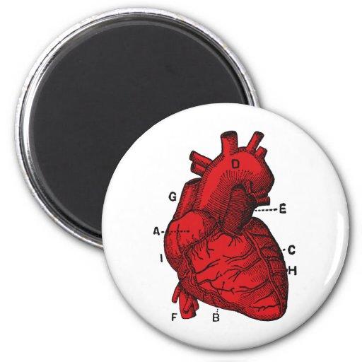 corazón imán redondo 5 cm