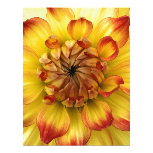 Corazón macro de una flor de la dalia membrete