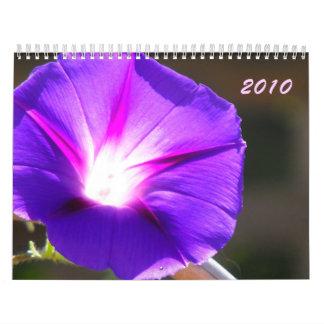 Corazón que brilla intensamente, 2010 calendario