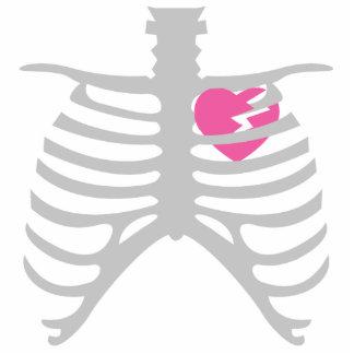 Corazón quebrado en Ribcage Escultura Fotografica