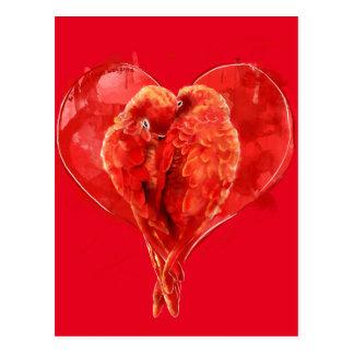 Corazón rojo. Loros cariñosos Tarjetas Postales