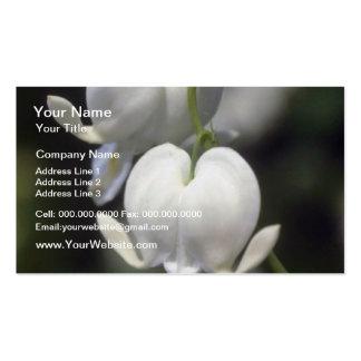 corazón sangrante blanco, (Dicentra Spectabilis) f Tarjetas De Visita