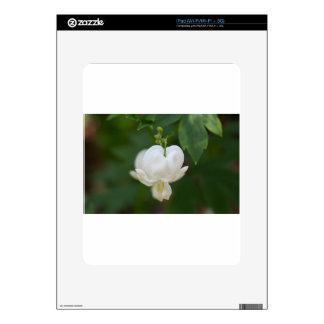 Corazón sangrante blanco iPad skins