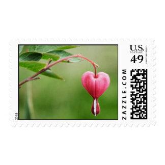 Corazón sangrante rosado sello postal