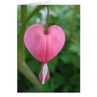 Corazón sangrante tarjeta pequeña