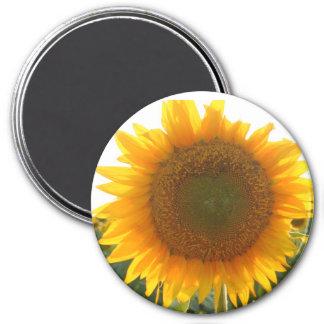 Corazón soleado imán redondo 7 cm