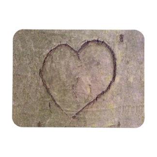 Corazón tallado en un árbol imán rectangular