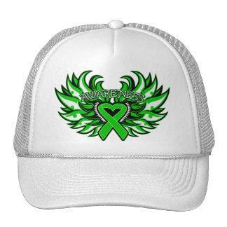 Corazón Wings png de la conciencia de lesión de la Gorros