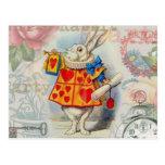 Corazones blancos del conejo postales