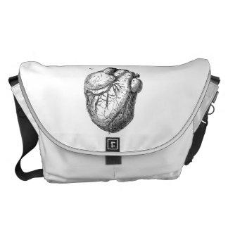 Corazones cardiacos retros de la anatomía del cora bolsa messenger