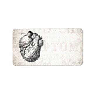 Corazones cardiacos retros de la anatomía del cora etiqueta de dirección