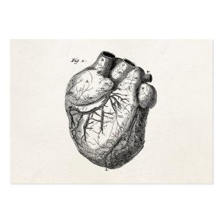 Corazones cardiacos retros de la anatomía del cora tarjetas de visita grandes