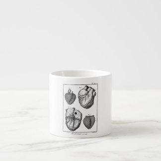 Corazones cardiacos retros de la anatomía del cora taza espresso