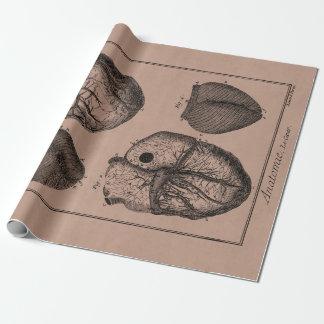 Corazones cardiacos retros de la anatomía del papel de regalo