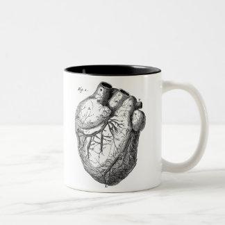 Corazones cardiacos retros de la anatomía del taza de café de dos colores