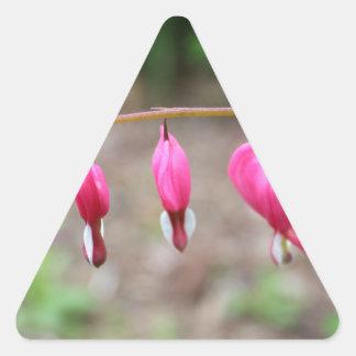 Corazones sangrantes pegatina triangular
