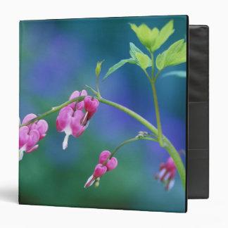 """Corazones sangrantes rosados en jardín. Crédito Carpeta 1 1/2"""""""