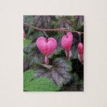 Corazones sangrantes rosados rompecabezas con fotos