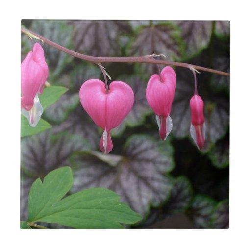 Corazones sangrantes rosados teja cerámica