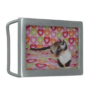 Corazones soñadores del gato siamés hebillas de cinturón rectangulares