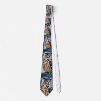Corbata eurasiática del búho