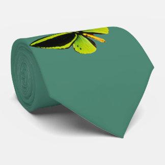 Corbata longwing verde del diseño de la mariposa