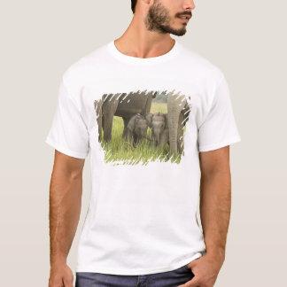 Corbett National Park, Uttaranchal, India. T-Shirt