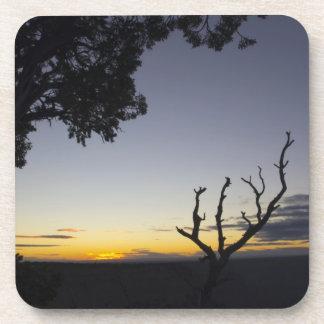 Corcho de la puesta del sol del Gran Cañón Posavasos De Bebidas