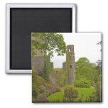 Corcho, Irlanda. El castillo infame 2 de la lisonj Imán De Nevera