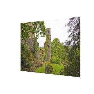 Corcho, Irlanda. El castillo infame 2 de la lisonj Lienzo Envuelto Para Galerías