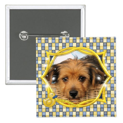 Cordell_Chorkie_Shelly-3a Pinback Buttons