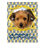 Cordell_Chorkie_Shelly-3a Post Card
