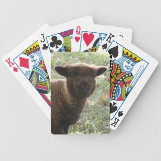 Cordero al sur de la muñeca barajas de cartas