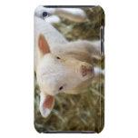 Cordero del bebé iPod touch funda