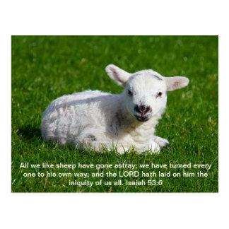Cordero del Passover, Isaías 53 Tarjetas Postales
