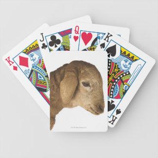 Cordero nacional baraja de cartas