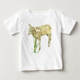 Cordero que pasta en camisa del bebé de la hierba