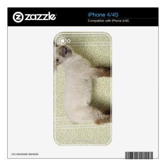 Cordero que se coloca dentro, y papel pintado calcomanías para el iPhone 4S