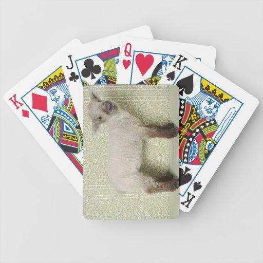 Cordero que se coloca dentro, y papel pintado flor baraja cartas de poker