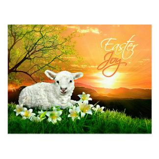 Cordero y salida del sol de Pascua con los lirios Postal