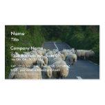 Corderos de los caminos de las ovejas plantilla de tarjeta de negocio
