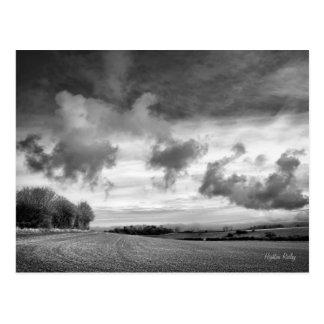 Corderos del cielo, postal de Wiltshire