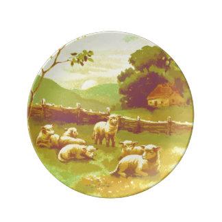 Corderos en prado sereno del país platos de cerámica