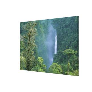 Cordillera Central, Angel Congo) Falls, many Canvas Print
