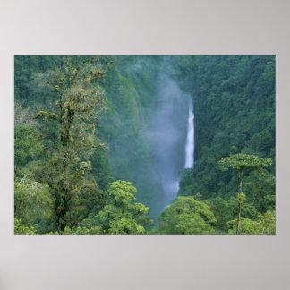 Cordillera Central, Angel Congo) Falls, many Print