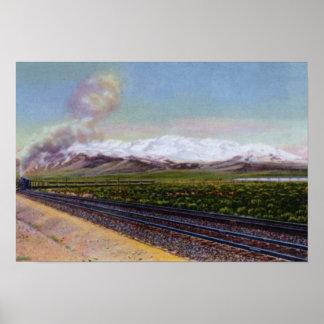 Cordillera del rubí de Elko Nevada Póster