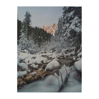 Cordillera nevada de Geisler Cuadros De Madera