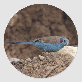 Cordon-Bleu Classic Round Sticker