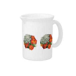 Cordón de la reina Anne con las flores anaranjadas Jarrón